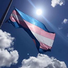 Transgender Flag.png