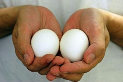 hands-eggs-940x626.jpg